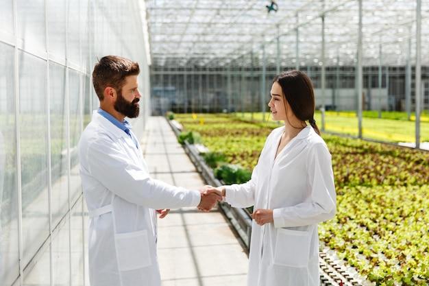 実験室服の2人の研究者が温室の周りを歩き回り、互いに手を振っている