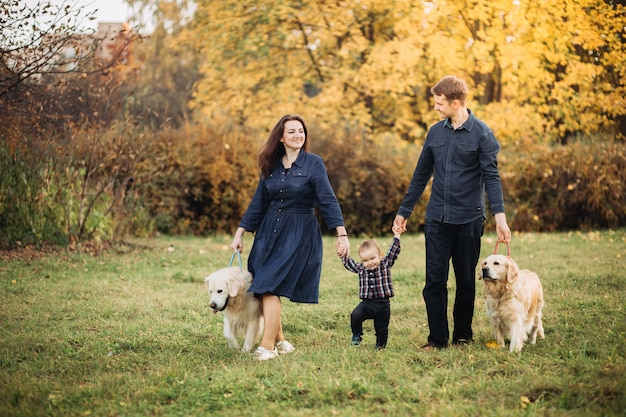 秋の公園で子供と2つのゴールデンレトリーバーと家族