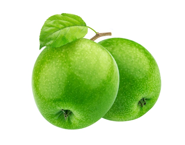 2 зеленых яблока на ветви изолированной на белизне