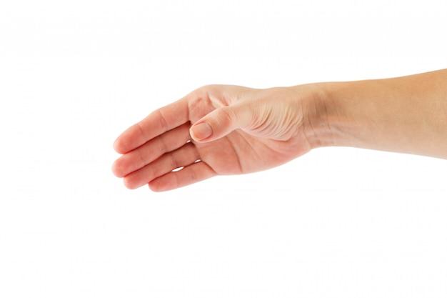 白い背景に分離された2つの手