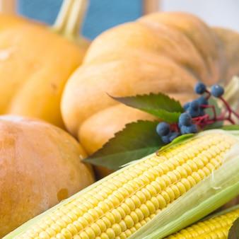 3つの生のカボチャと青い秋の果実を持つ2つのトウモロコシの穂軸