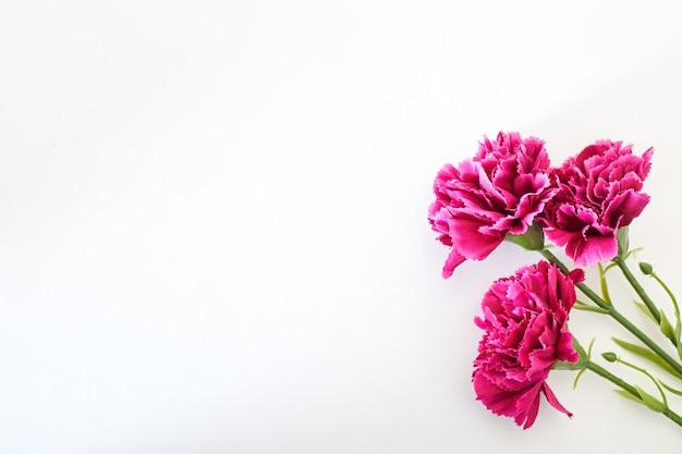 3月8日女性の日カーネーション
