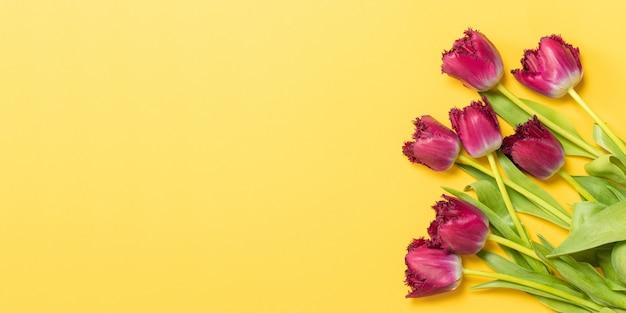 3月8日ハッピー女性の日。コピースペースと黄色の背景にライラックのチューリップ