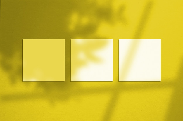 2021 년 팬톤 컬러를 조명하는 3 개의 정사각형 포스터 모형.