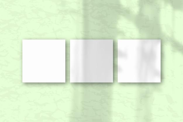 3 квадратных листа белой текстурированной бумаги на фоне зеленой стены. макет с наложением теней растений. естественный свет отбрасывает тени из окна. плоская планировка, вид сверху. горизонтальная ориентация
