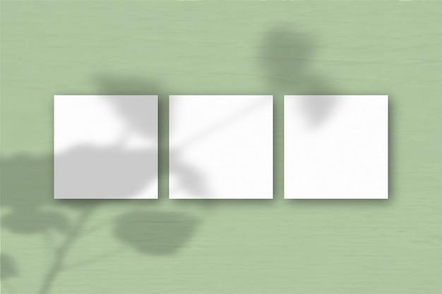 3 квадратных листа белой текстурированной бумаги на фоне зеленой стены. наложение мокапа с тенями растений. естественный свет отбрасывает тени от герани. плоская планировка, вид сверху. горизонтальная ориентация