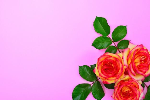緑の葉を持つ3つの黄色いバラ