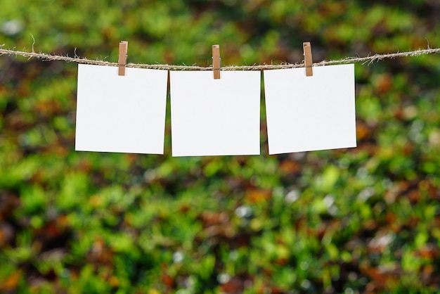 木製の衣服止め釘によって掛けられる3つの白いメモ用紙のクローズアップ