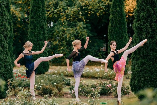 夏の公園でポーズをとる3つの現代の女性バレエダンサー。