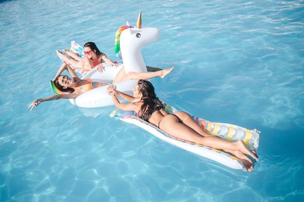 プールで泳いでいる3人の若いモデル。彼らは山車に横たわっています。友達が楽しい。彼らは冷やして水をはねかける。モデルは素晴らしく、セクシーで、熱く見えます。