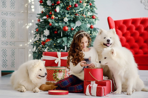 新年のクリスマスツリーの横にある美しい少女と3つの大きなふわふわの白い犬が、ギフト付きの赤いボックスを開梱します。新年のお祝いインテリア。