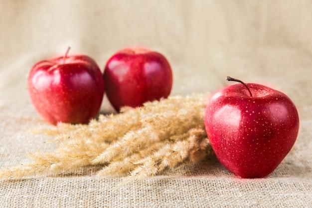織物の背景にスパイクと3赤いリンゴ。健康的な食事