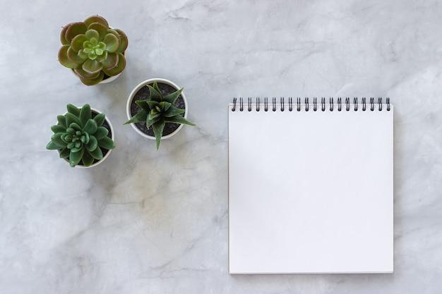 3つの多肉植物と白い大理石の空白のノートブックを開く