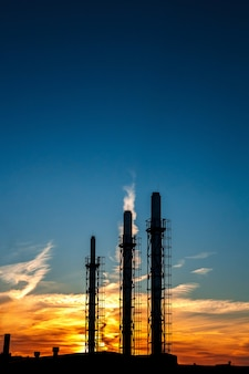 夕焼けと青い空を背景に植物の3本のパイプ。