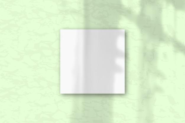 3 квадратный лист белой текстурированной бумаги на фоне зеленой стены. планировка с наложением теней растений естественный свет отбрасывает тени из окна. плоская планировка, вид сверху. горизонтальная ориентация