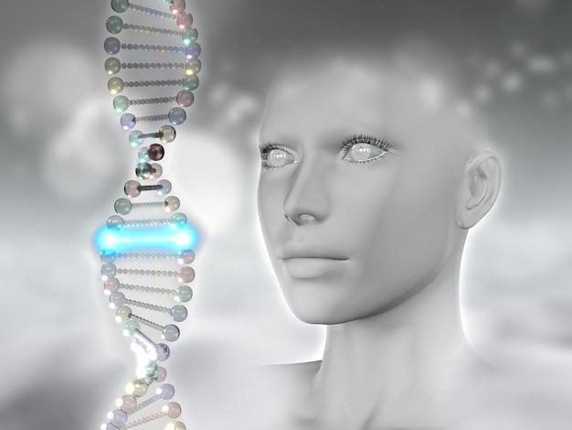 Il rendering 3d di una testa femminile e dna con uno filamenti incandescenti