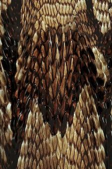 3d бежевый коричневый дракон рептилия рыба змеиная кожа узор фона глянцевая кожа abstrac Premium Фотографии