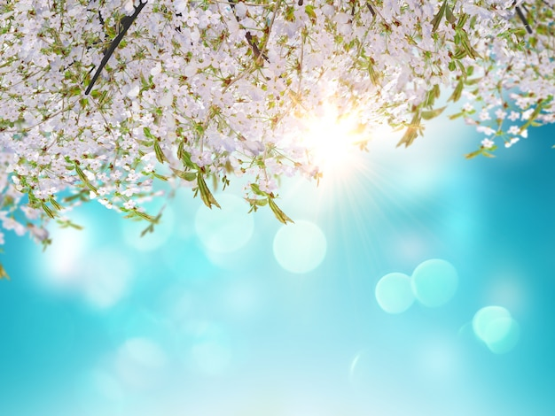 3d cherry blossom leaves on a blue sky background