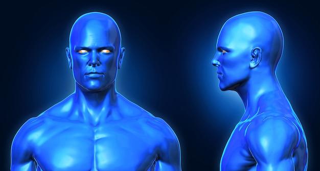 3d、概念的な人間の筋肉、青色の影頭部の顔解剖学的な男性の正面と側面