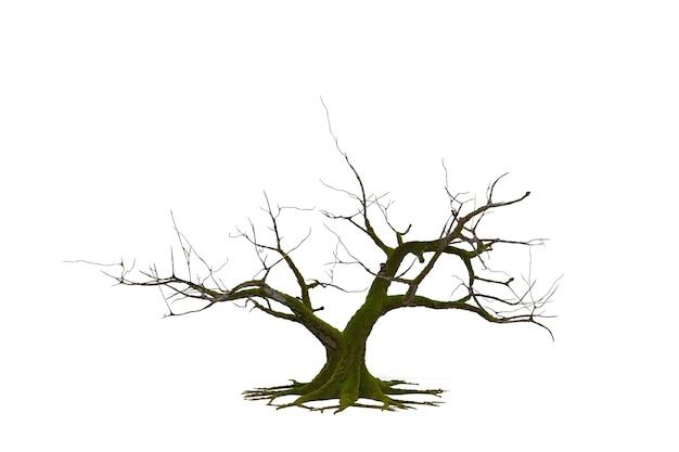클리핑 패스와 함께 흰색 배경에 3d 죽음의 나무, 3d 그림 렌더링