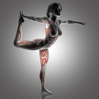 3d female figure in lord of the dance yoga pose with muscles used highlighted