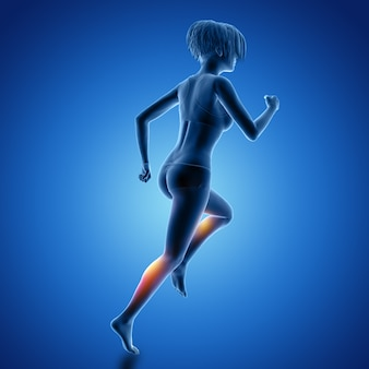 3d female figure in running pose with muscles used highlighted