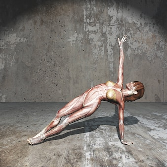 3d female figure with muscle map in yoga position in grunge room