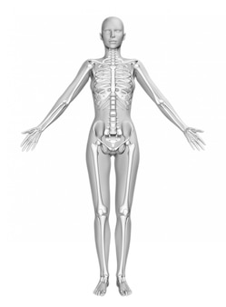 3D female figure with smooth skin and skeleton