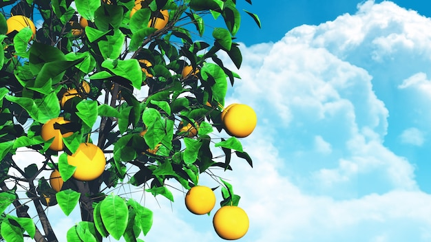 3d fruit tree against blue sky