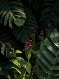 3d 녹색 야자 잎 구색