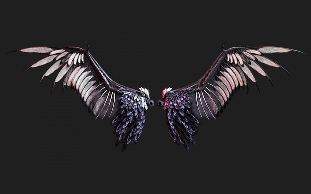 3d illustration demon wings, black wing plumage isolated on black   with clipping path.