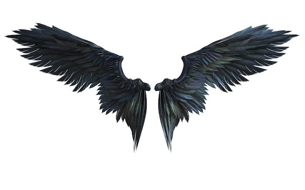 3d 일러스트 악마 날개, 검은 날개 깃털 흰색 배경에 고립