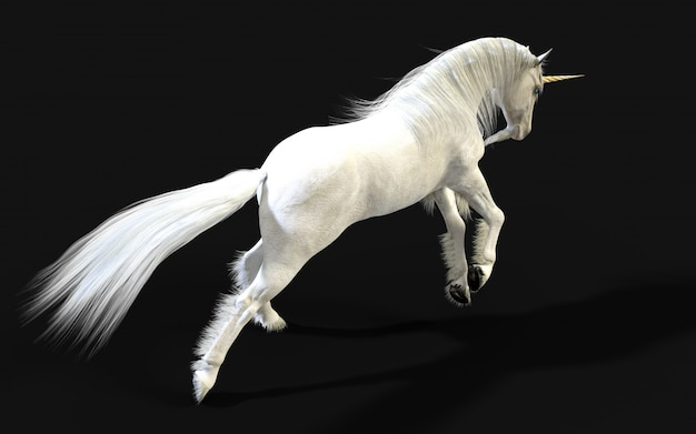 3d illustration mythical white unicorn posing isolate on dark wall with clipping path.