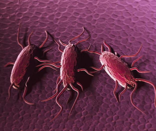 박테리아 Listeria Monocytogenes, 리스테리아 증을 유발하는 편모를 가진 그람 양성 박테리아의 3d 일러스트 프리미엄 사진