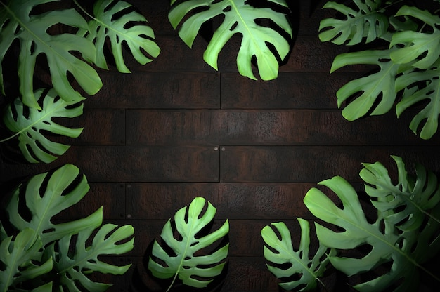 3d иллюстрации. тропический лист на фоне дерева
