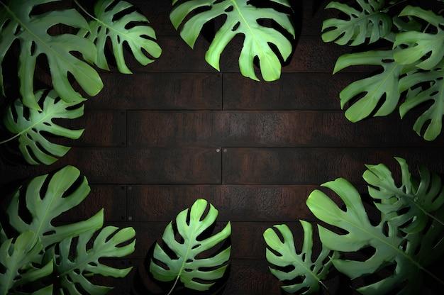 3d illustration. tropical leaf on wood background