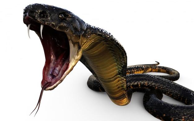 3d иллюстрация king cobra самая длинная ядовитая змея в мире