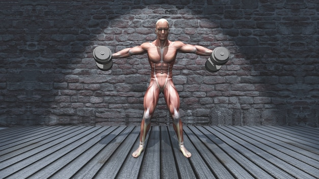 3d male figure in dumbbell standing lateral raise raised arms pose