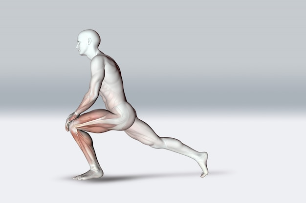3d male figure in stretching pose holding knee and showing muscles