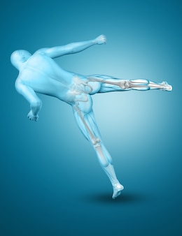 3d male medical figure in a kick boxing pose