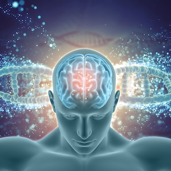 3d medical background with male figure with brain highlighted on dna strands