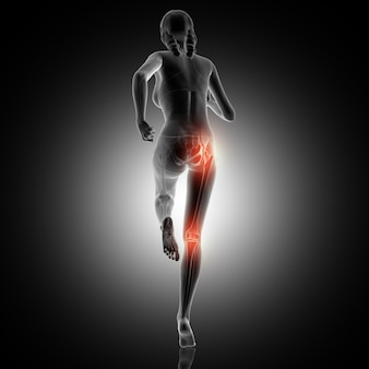 3D rear view of a female running with knee and hip joint highlighted