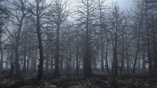 무서운 숲을 통해 비행의 3d 렌더링 애니메이션