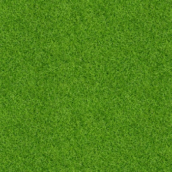 3d render of green grass texture for background. green lawn texture background. close-up.