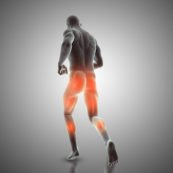 3d render of a male figure in running pose showing rear muscles used