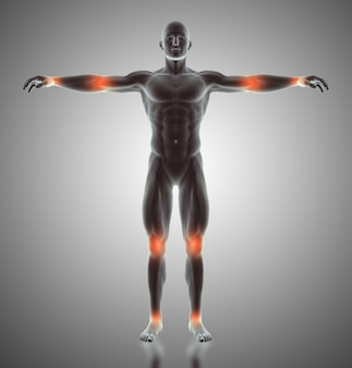 3d render of a male figure with joints highlighted