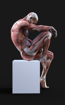 3d render of male figures pose with muscle