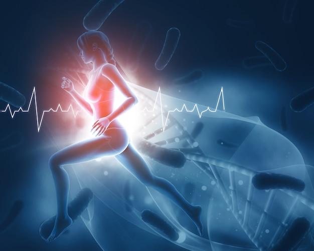 3d-визуализация медицинской фигуры с женским ходом и сердечным ритмом