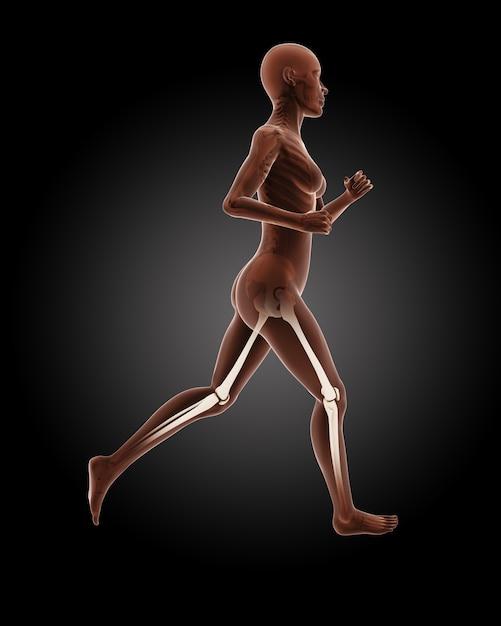 3d render of a running female medical skeleton