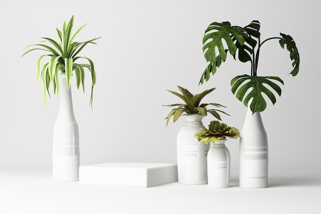 3d render of tropical plants isolated on white